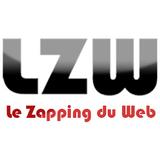 Le Regis du jour 04/11/08 dans le Zapping du WEB 6910291